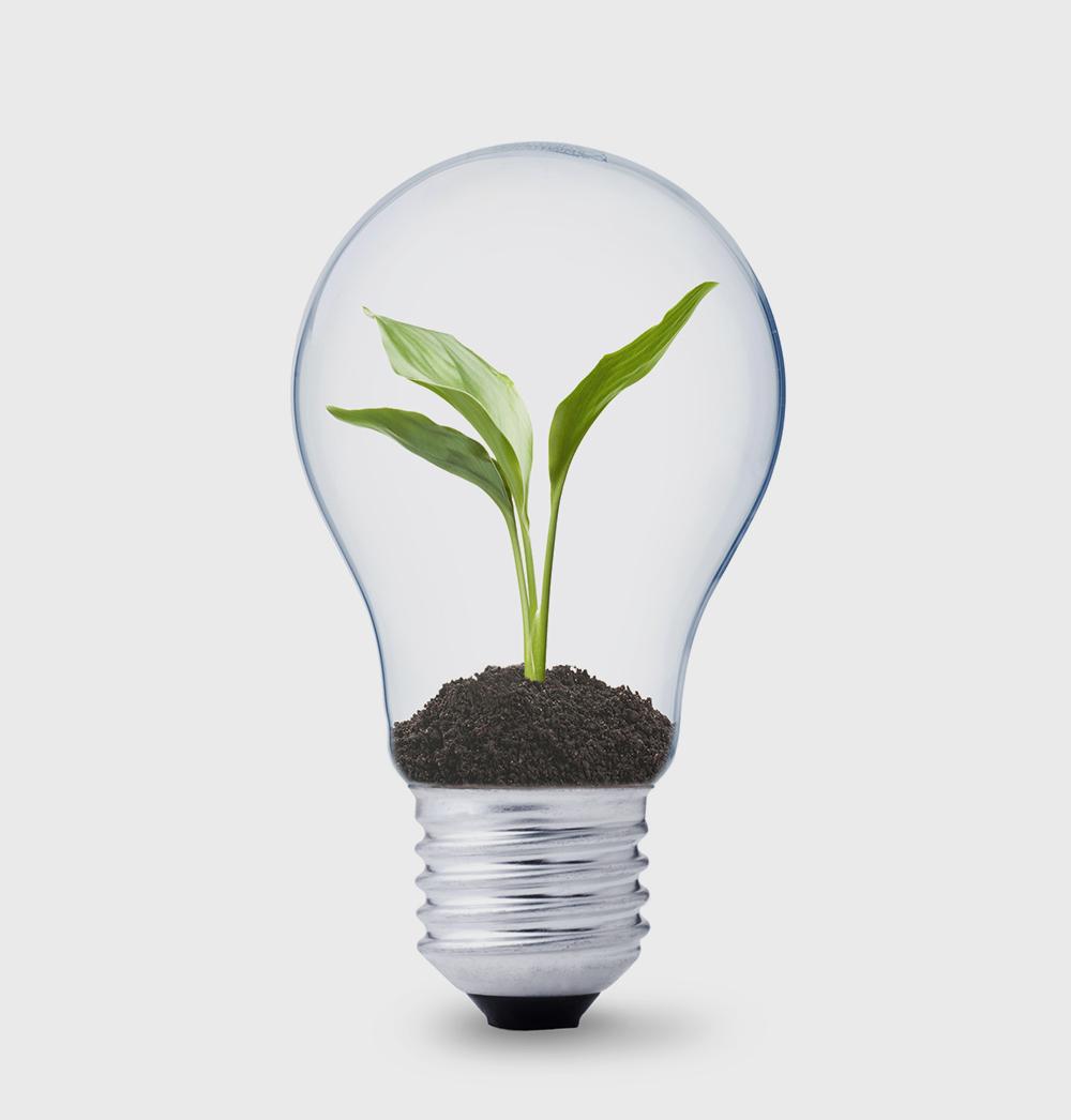 edili_soluzioni_e_servizi_italiana_energia
